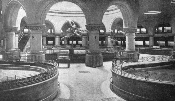 wolfen-battery-aquarium interior
