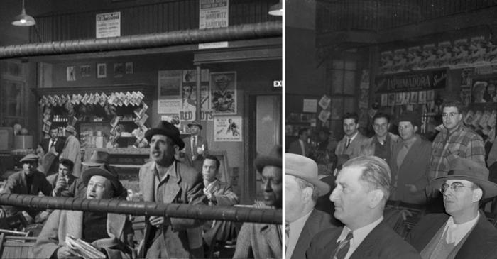 stillmans concession 1956 vs 1952